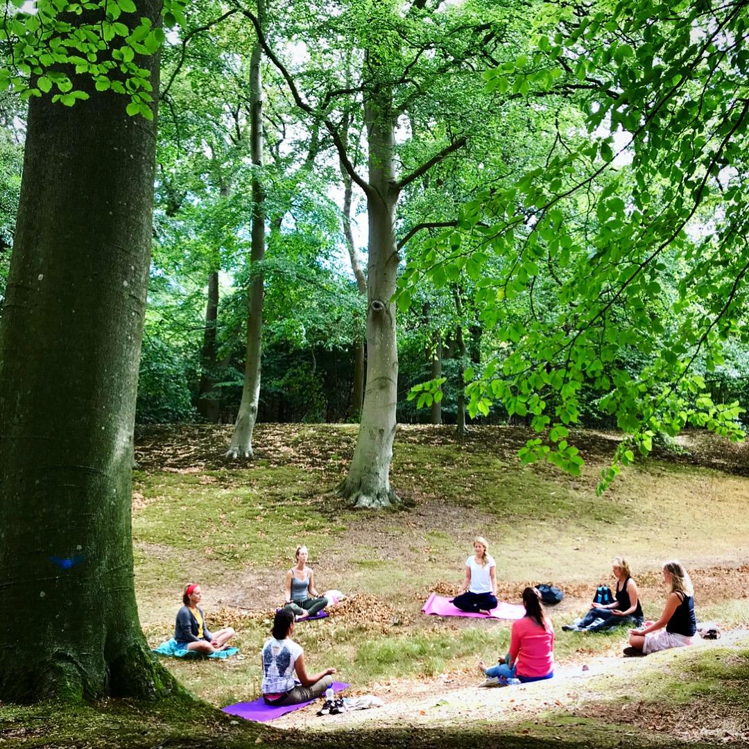 mediteren_natuur_mindfullness_retreat_Isabel_Sips_Pranic_Healing